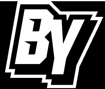 Baseball Youth Logo
